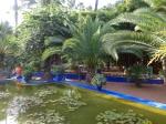 Yves St Laurant Gardens