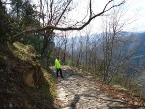 A Long Way Down to Rapallo