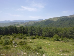 The Road To Chefchaouen