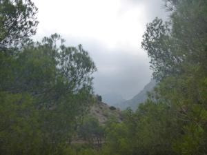 Clouds Hiding The Peaks